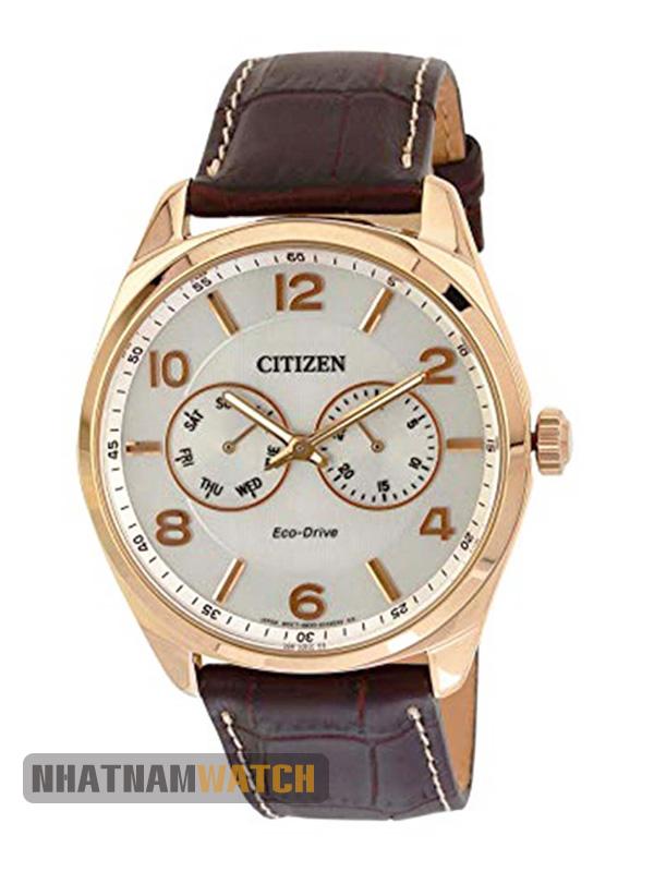 Citizen AO9024-08A Eco-drive Gold