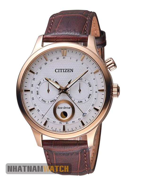 Citizen AP1052-00A Eco-drive Leather