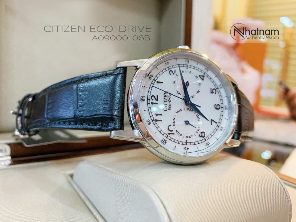 Citizen AO9000-06B Eco-drive Leather