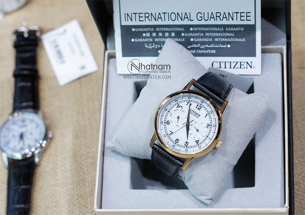 Citizen AO9003-16A Eco-drive Leather