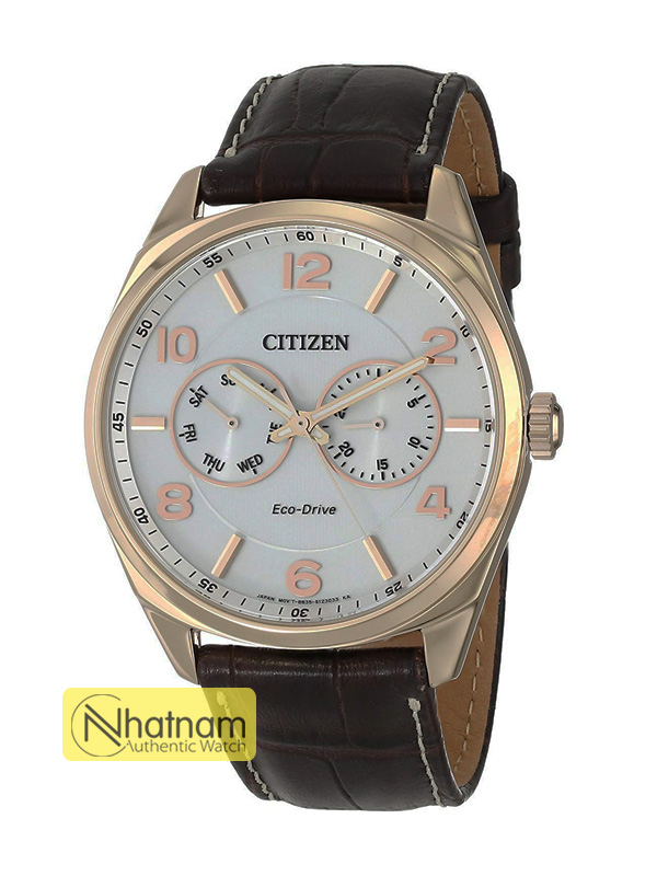 Citizen A09023-01A Eco-drive Gold Leather